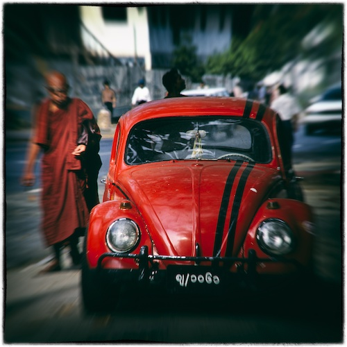 The Beetle & the Monk